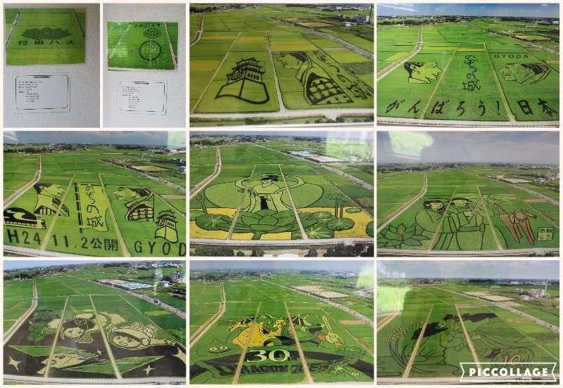 Rice field art over the years Kodai Hasu No Sato