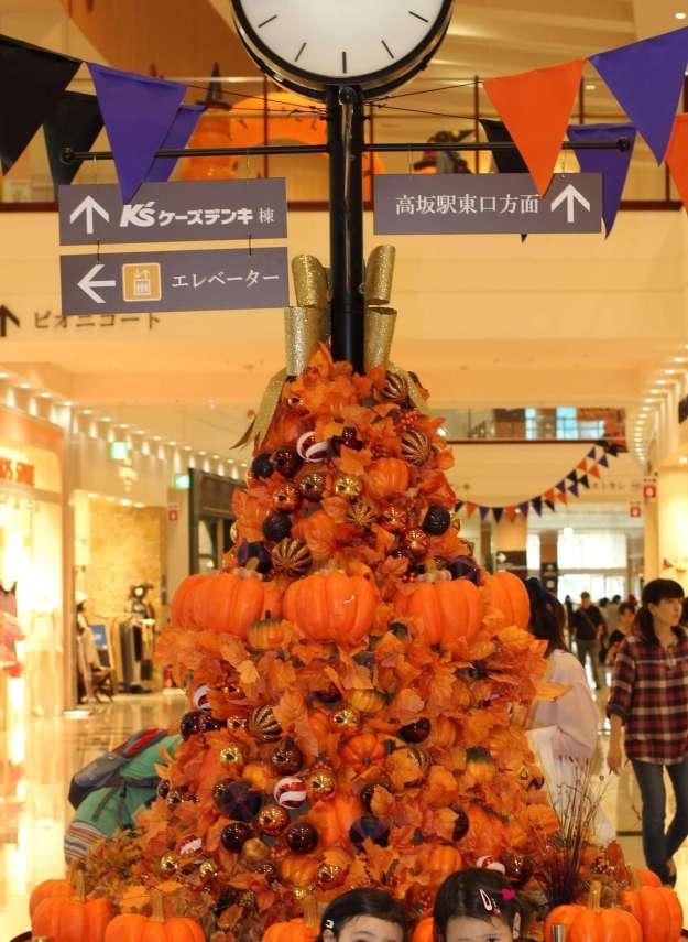 Pumpkin quiz Halloween Peony Walk