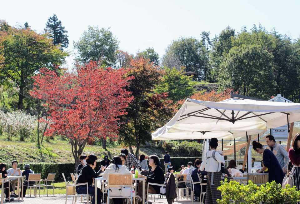 Outdoor seating and Autumn Leaves at the Pizza House in Kawaba Denen Plaza