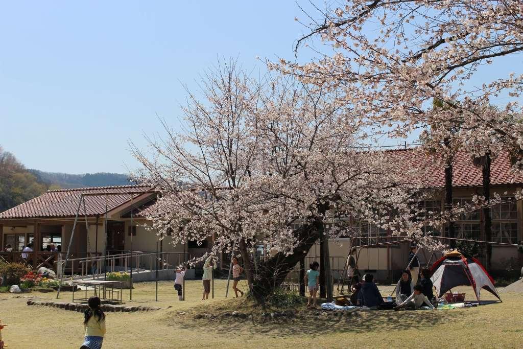 Sakura at Ashigaoka Anime school Shimozato former school non non biyori