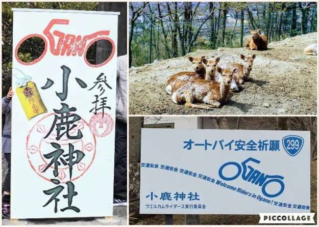 Ogano Deer Park and Biker's shrine