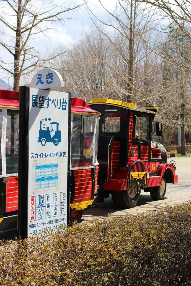 Chichibu Muse Park train