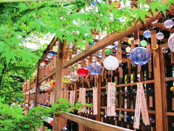 2019 Wind chimes Kawagoe Hikawa Shrine