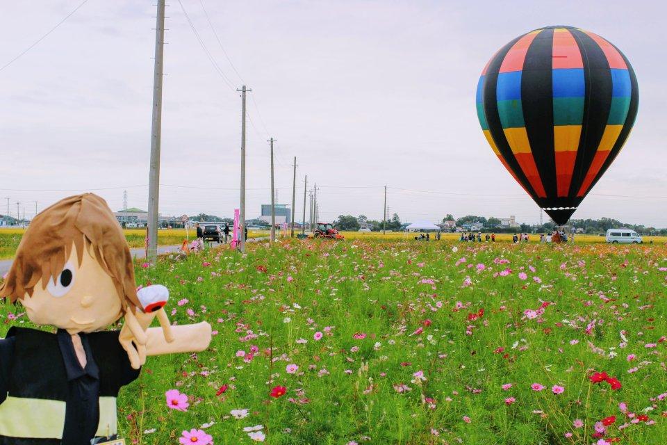 yoshimi cosmos festival yoshimi scarecrows