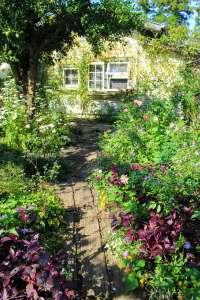 Garden Cafe Greenrose | MOROYAMA