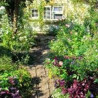 Garden Cafe Greenrose 2021 | MOROYAMA