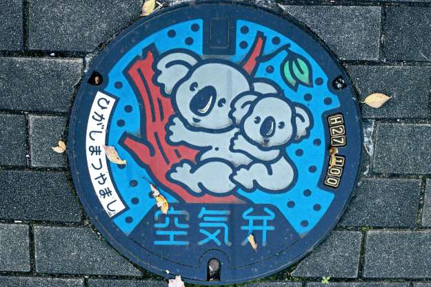 Saitama Children's Zoo Manhole Cover art