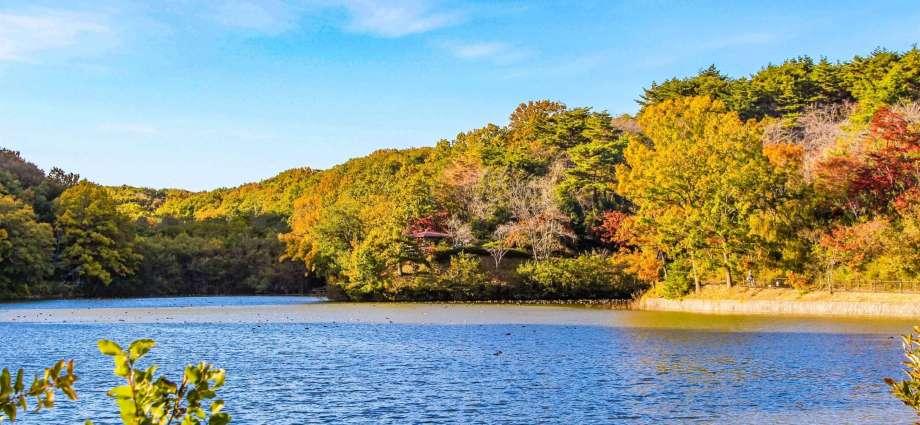 Hatcho lake Hatchoko Park Yoshimi