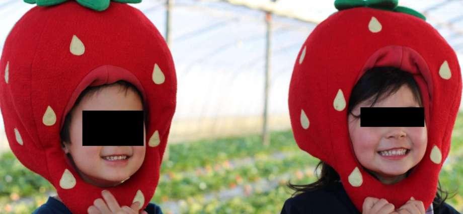 Imanishi strawberry picking farm Yoshimi
