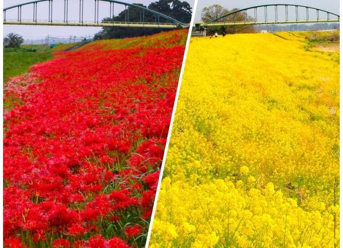 off the beaten path scenery in Saitama Prefecture
