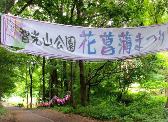 Chikozan Greenery and Iris Festival