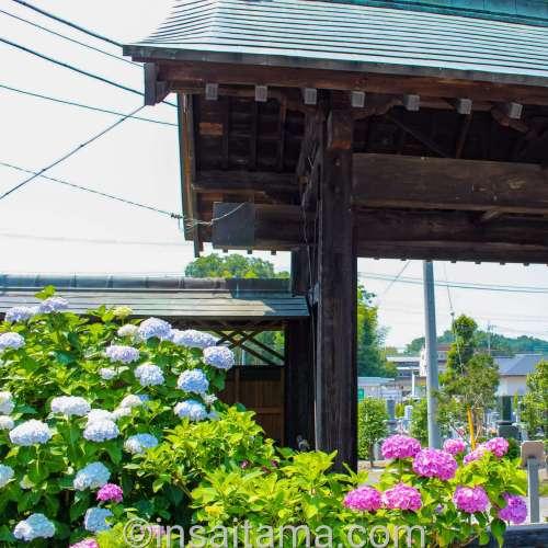 Hoanji Temple Kumagaya