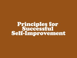 The 7 Principles for Successful Self-Improvement