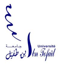 13- Faculté des sciences kénitra