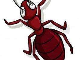 Против мравки 3