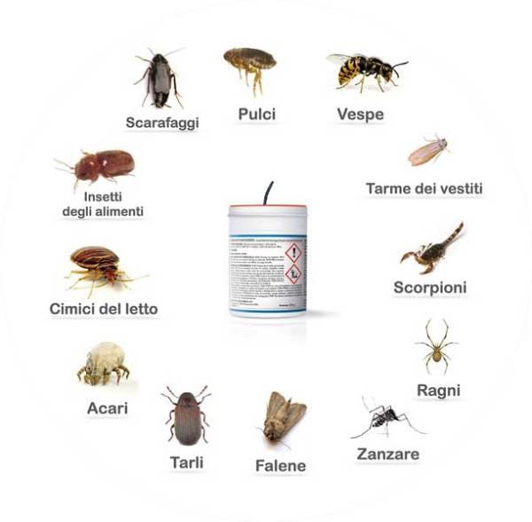 Duracid fumigante insetti target