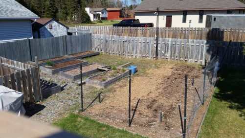 2018 garden overview: The garden in May before plating.