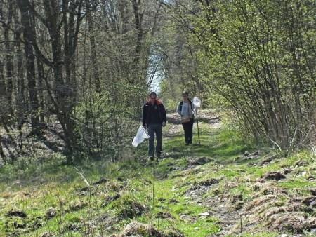 Ania i Łukasz dochodzą do polanki, na której rójkę odbywała Neoascia meticulosa