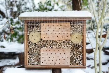 Insektenhotel im Winter