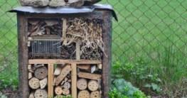 Wie lange kann man ein Insektenhotel benutzen