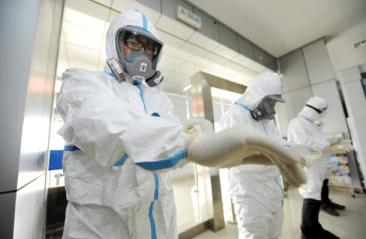 insektpol dezynfekcja