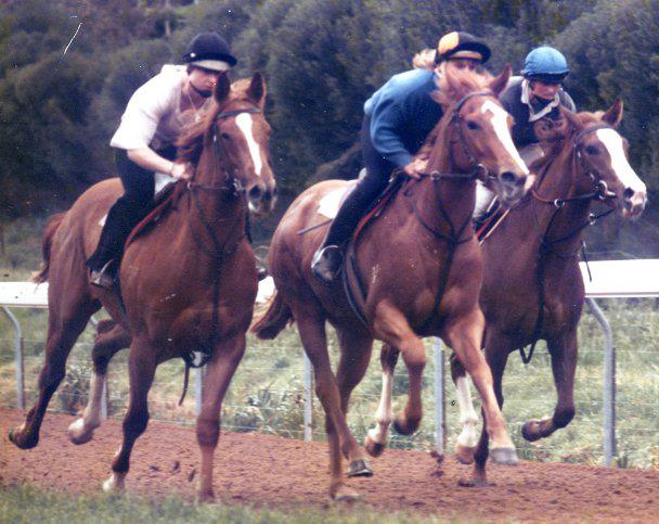 Lindsay Park Riding Days