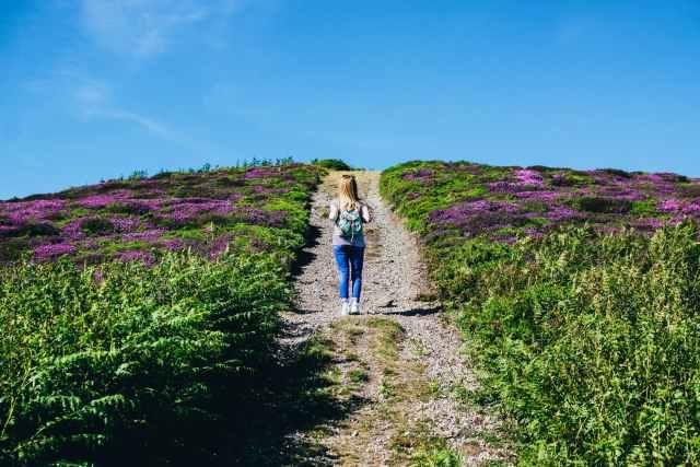 woman walking alone in between purple flower field