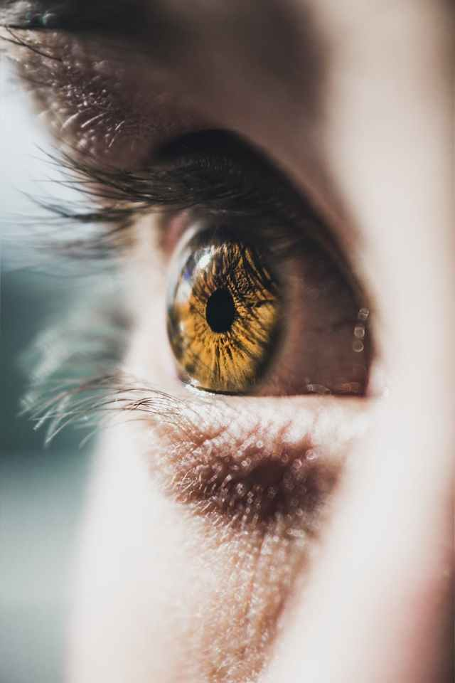 close up photo of person s eye