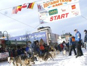 Start zum Iditarod in Anchorage auf der 4th Avenue. - Foto: Cathryn Posey/Visit Anchorage