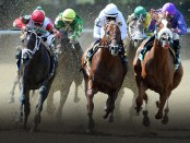 Belmont Stakes Racing Festival. - Foto: Discover Long Island