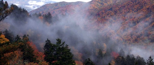 Der Great Smoky Mountains National Park im Herbstkleid. - Foto: Tennessee Tourism