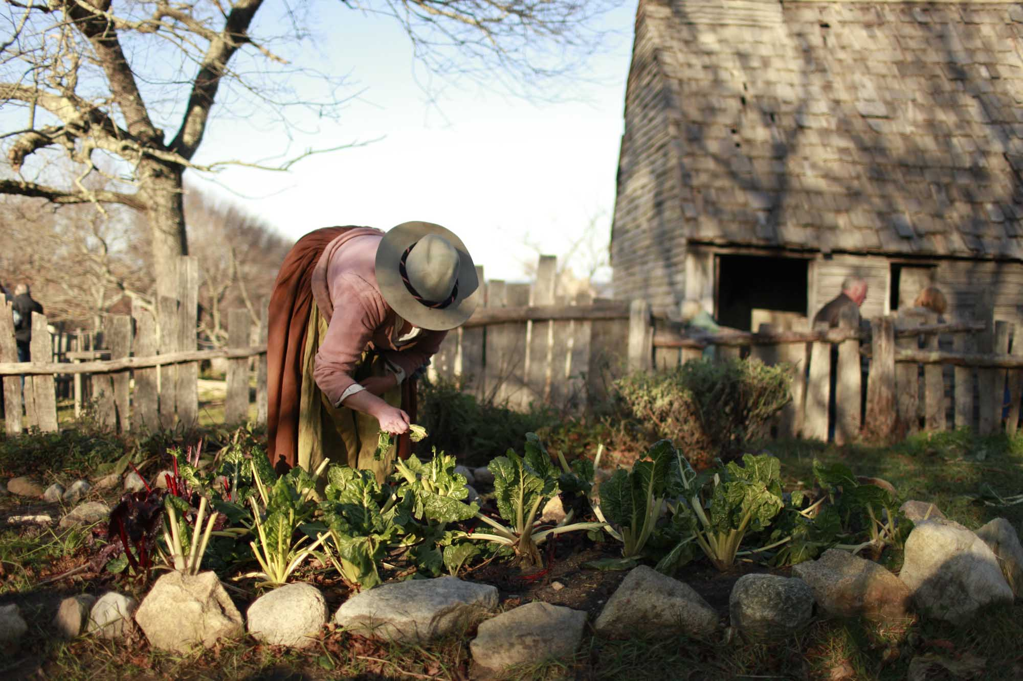 Gartenarbeit Plimoth Plantation. – Foto: Massachusetts Office of Travel and Tourism