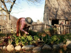 Gartenarbeit Plimoth Plantation. - Foto: Massachusetts Office of Travel and Tourism