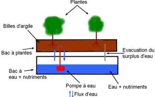 Ebb flow Ebb Flood