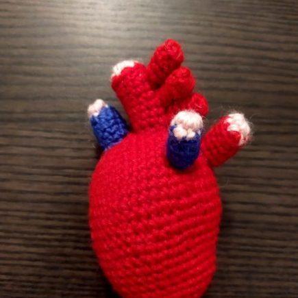 anatomic heart corchet