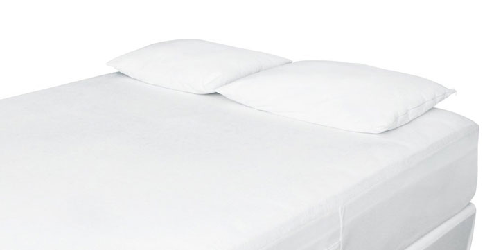 best pillow protector reviews bed bug