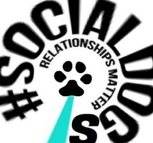 Social Dogs Channel e1584262817206