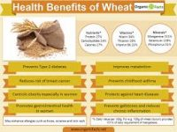 Tips on the essence of Wheat Healthwise