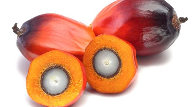 Seven things You Didn't Know About Palm Oil