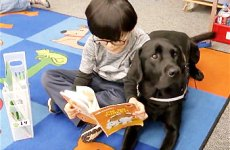 Kindergarten student reading with service dog