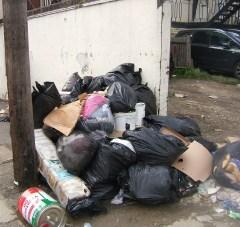 Rubbish in Croydon 1