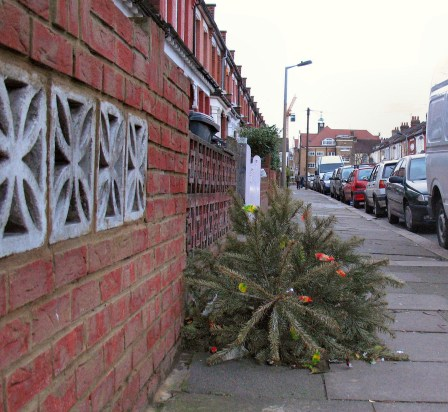 Dumped Christmas tree