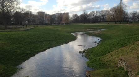 The River Wandle in Wandle Park today, a couple of miles north of the flooding in Kenley and Purley, and as full of water as it has ever been since this stretch of the river was brought back to the surface