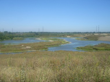 How the Beddington Farmlands nature reserve appears now: the ecology will be jeopardised forever by the building of the Viridor waste incinerator