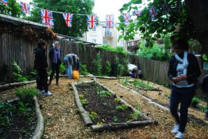 Crystal Palace Transition Town has created new gardens for growing vegetables and educating children