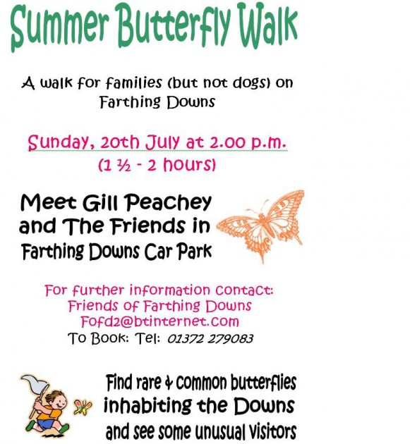 Butterfly walk July 20