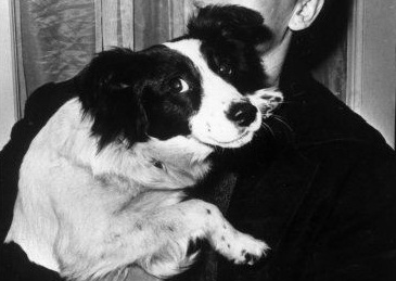 Give the dog a festival: Pickles' contribution to history should be properly celebrated