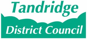 Tandridge Council logo