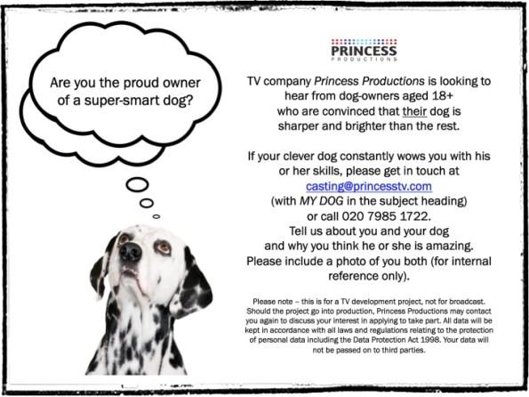 Dog owner poster