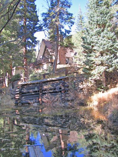 house-and-pond